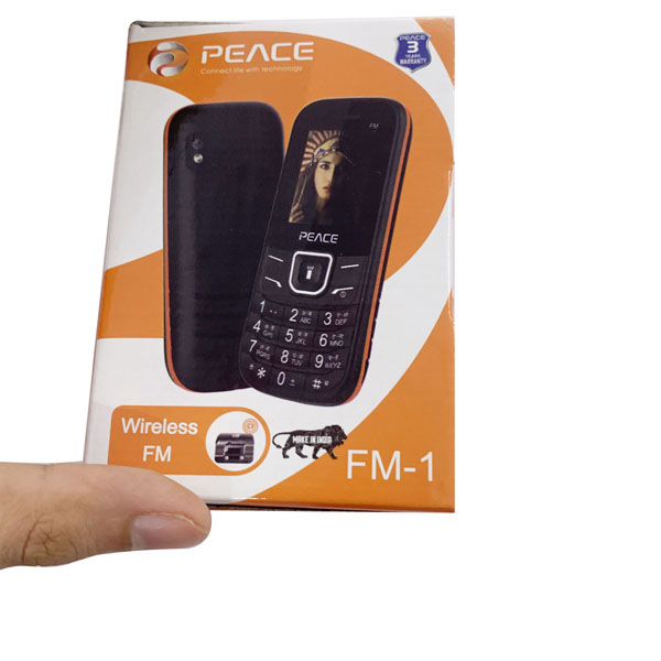 mobile voice changer device